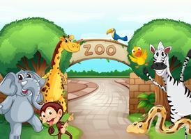 ein Zoo und die Tiere vektor