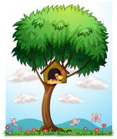 Ein Vogel in einem Baum mit einem Vogelhaus