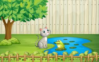 Eine Katze und ein Frosch im Zaun