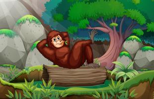 En gorilla i skogen vektor