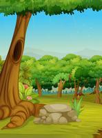 Skogscenen vektor