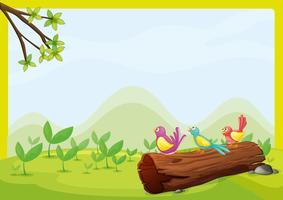 Fåglar som sitter på ett torrt trä vektor
