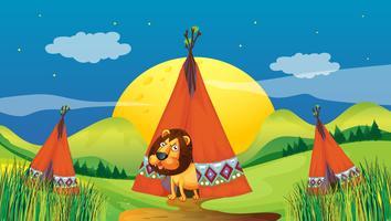 Ett lejon inne i ett tält
