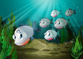 Sechs Fische mit großen Reißzähnen unter dem Meer