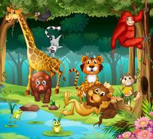 Tiere und Wald