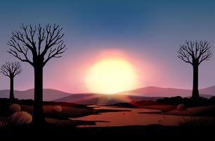 Silhuett solnedgång vektor