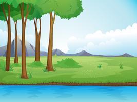 Ein Fluss und ein Baum