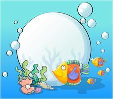 Ein Fischschwarm in der Nähe der großen Perle