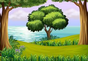 Kullar med träd nära floden