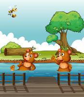 Ein Bär zeigt auf die Biene