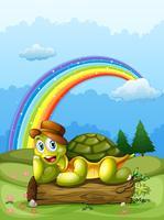 Eine fröhliche Schildkröte über dem Baumstamm und dem Regenbogen am Himmel