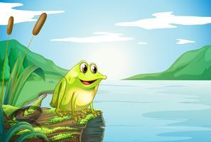 Ein Stamm am Fluss mit einem Frosch