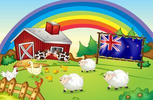 Ein Bauernhof mit einem Regenbogen und einer gerahmten Flagge Neuseelands