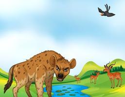 Djur och fält vektor