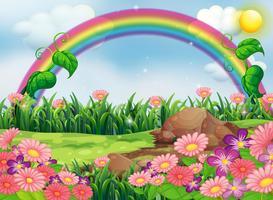 En förtrollande trädgård med en regnbåge