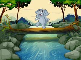 Ein Elefant überquert den Fluss vektor