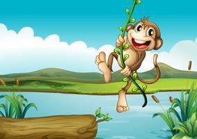 Ein fröhlicher Affe, der mit der Rebpflanze spielt