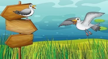 Zwei zwitschernde Vögel vektor
