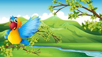 En färgstark fågel över berget