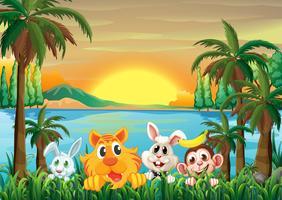 Djur vid floden med kokospalmer