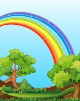 Regnbåge och fält vektor