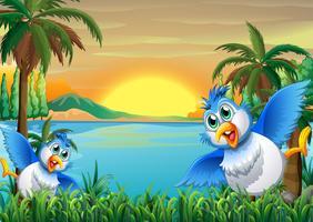 Två färgglada fåglar vid flodbredden vektor
