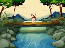 En apa som passerar floden