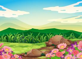 Eine wunderschöne Landschaft