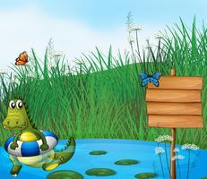En krokodil som simmar i dammen