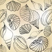 Seashell sömlöst mönster. Sommarlov marin bakgrund.