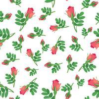 Nahtlose Blümchenmuster Blumen Hintergrund Ornamentale Textur