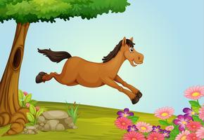 Ein springendes Pferd