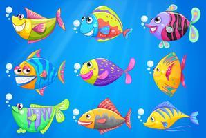 Neun bunte Fische unter dem Meer