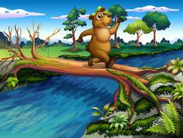 En björn springer medan du korsar floden