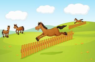 De fyra hästarna vektor