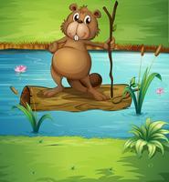 En bäver som håller ett trä i floden