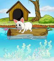 Ein Hund über einem schwimmenden Stamm vektor