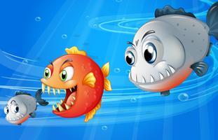 Tre läskiga fiskar vektor