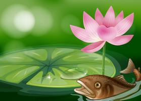 En damm med en fisk, en vattenlilja och en blomma