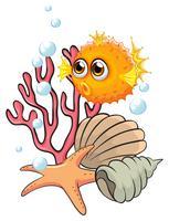 En orange pufferfisk nära snäckskalarna