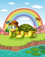 Eine Schildkröte am Teich mit einem Regenbogen im Himmel vektor