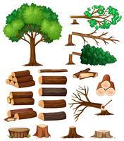 Träd och stubbe träd vektor