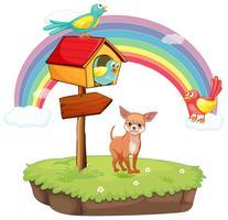 Hund und Vogelhäuschen