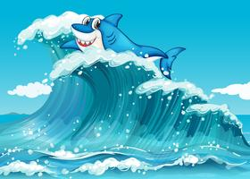 Ein Hai über den großen Wellen