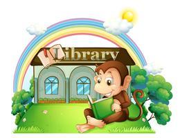 En apa som läser en bok utanför biblioteket