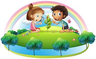 En tjej och en pojke tittar på växten