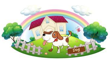 En hund som skyddar ett hus
