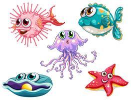 Fünf Meerestiere
