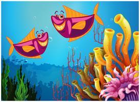 Fiskar under havet nära de färgstarka korallerna