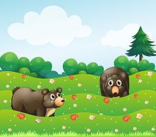Två björnar i trädgården vektor